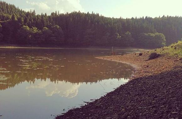 今日のダム、その1鯉オンリー。ボウズてした