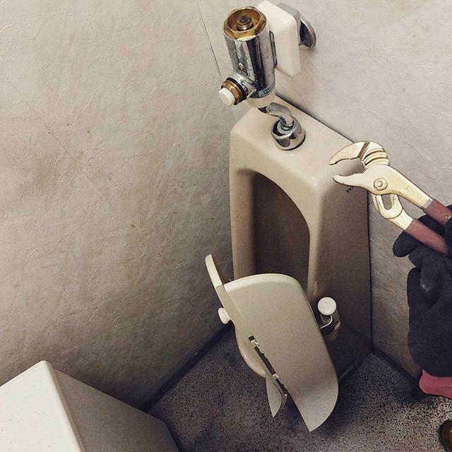 トイレ撤去る