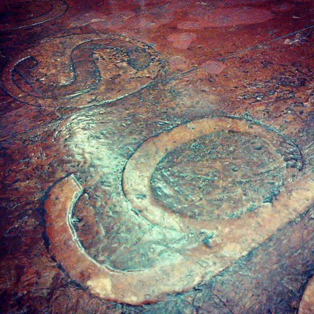12年間塗り重ねた床がもはや謎素材に。元はOSBなんですけど...