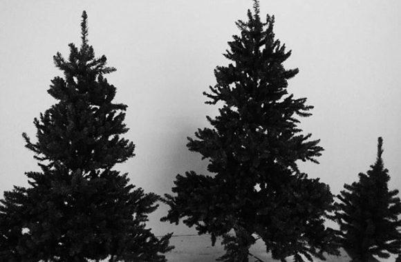 もうクリスマスシーズンか… あっとゆーまに年末ですね