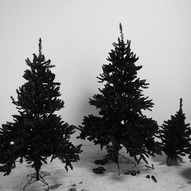 もうクリスマスシーズンか... あっとゆーまに年末ですね