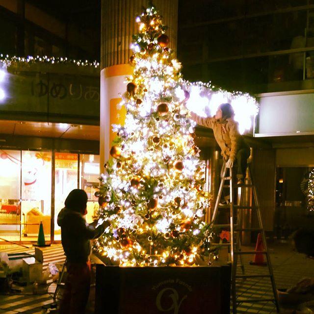 でっかいツリーを徹夜でおっ立てて今年のクリスマスはフライング終了。ヤバい寒さだった..@大泉学園内陸ってなんであんなに寒いのか。。やはり横浜がNo.1!