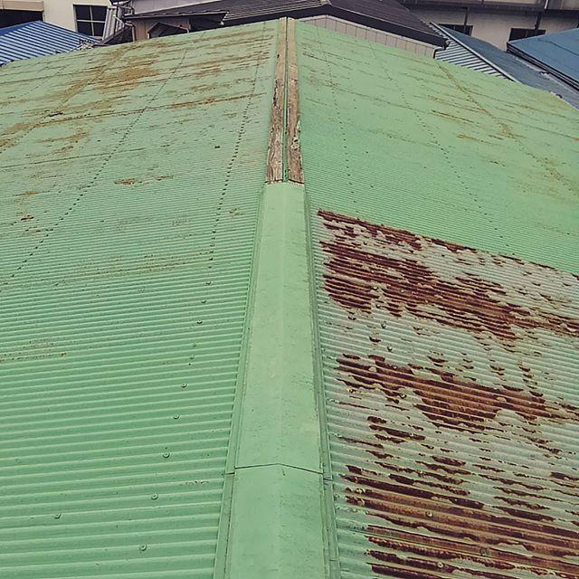 新たに借りた物件の天井から空が見えるので屋根に上ってみたら.. てっぺんのカバーがどっか行ってた。よく雨漏りしなかったなーついでに遮熱塗料で塗り替えよっと。#atelier
