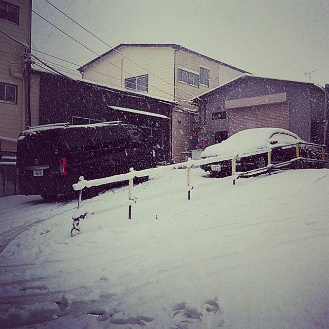 さすがに登れない...融雪材撒いとくか~